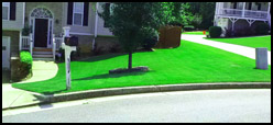Lawn Care Treatment Kennesaw GA